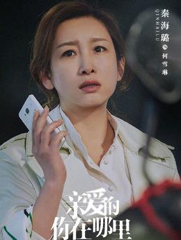 何雪琳(秦海璐饰演)