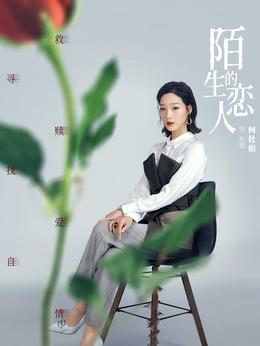 孙蕾(何杜娟饰演)