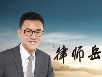 律师岳家军第二季 朱丹