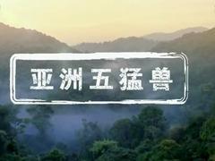 亞洲五猛獸