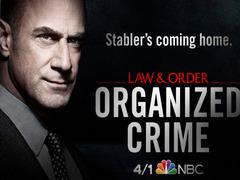 法律与秩序:组织犯罪