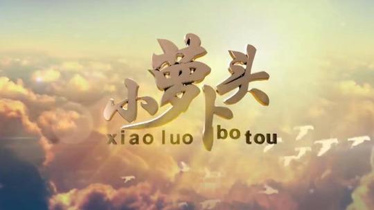 小萝卜头(2017年电视剧)