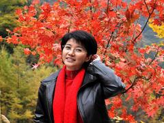 远山的红叶