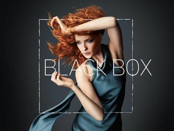 黑箱 凯利·蕾莉