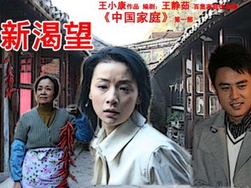 中国家庭之新渴望 杜淳