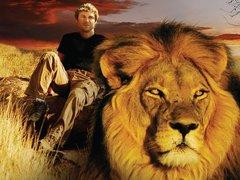 拯救骄傲的狮子