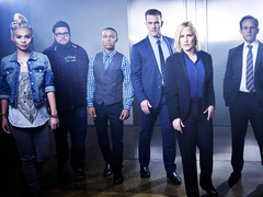 网络犯罪调查第二季