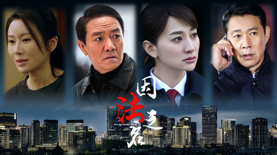 因法之名(2019年电视剧)