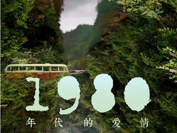 1980年代的爱情 芦芳生