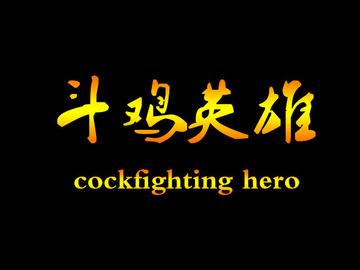 斗鸡英雄 赵小锐