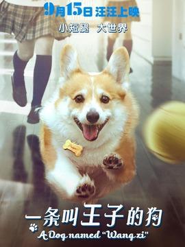 一条叫王子的狗