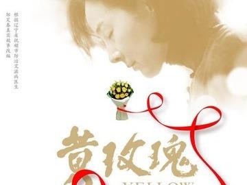 黄玫瑰 姜宏波