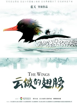云做的翅膀