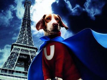 超狗任务 彼特·丁拉基
