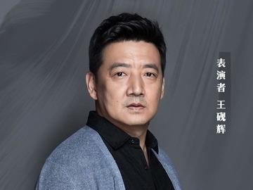 王砚辉图片